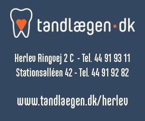 300 x 250 Tandlægen.dk undersidebanner